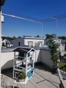 Dachterrasse mit Katzenhaus